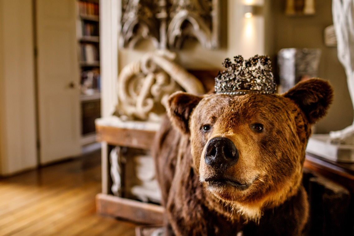 Aynhoe Park Wedding Planner Bear