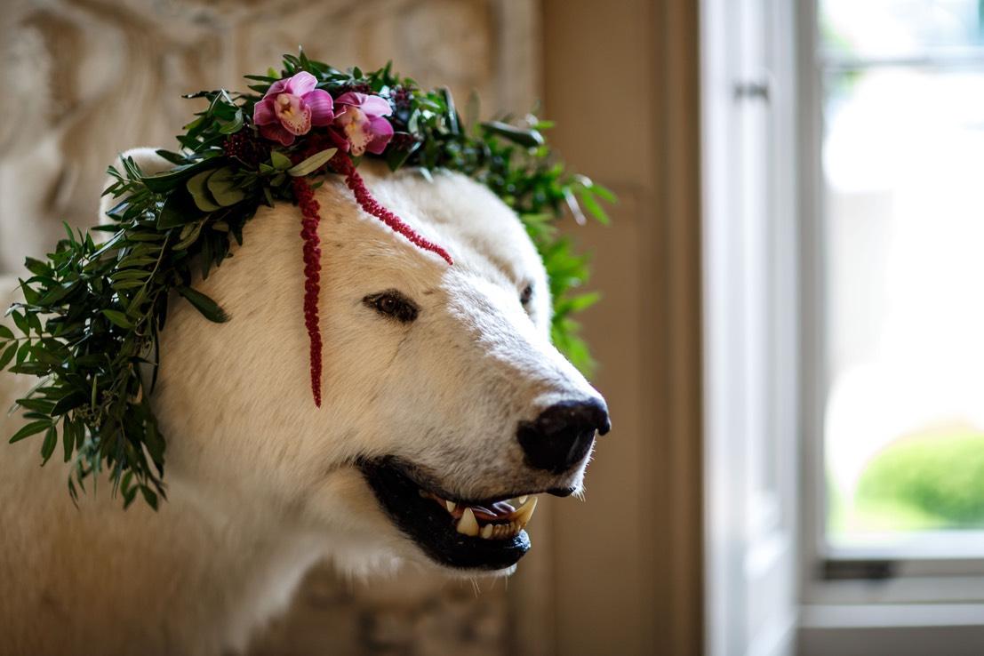 aynhoe park polar bear